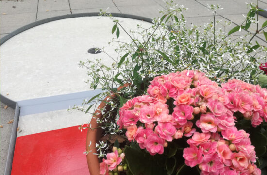 Blumentopf auf dem Tunnel